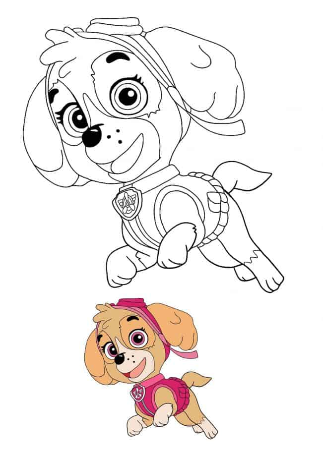 Paw Patrol Skye coloring page with sample