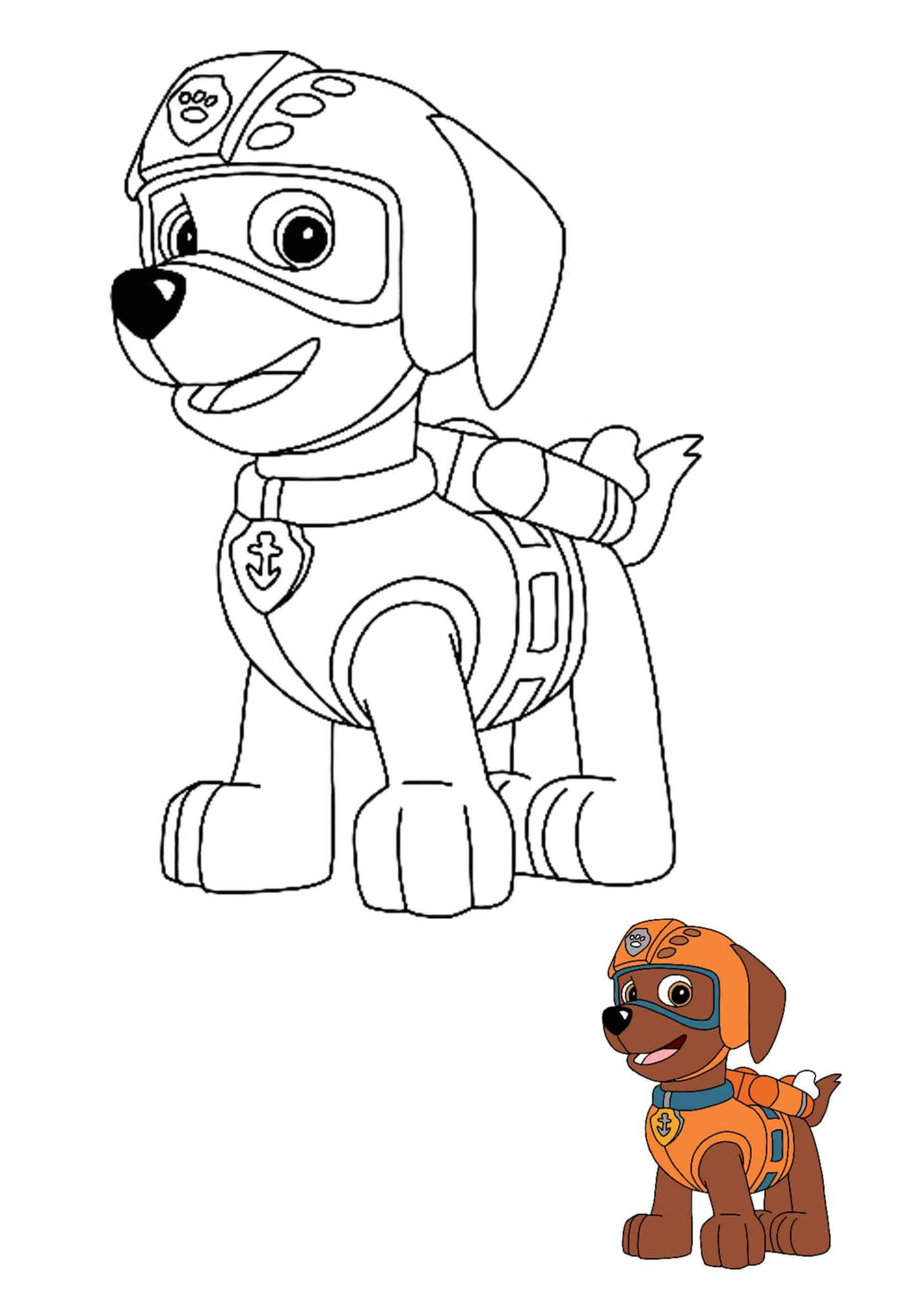 Paw Patrol Zuma coloring page with sample