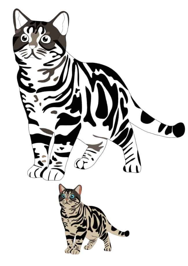 Realistic Cat free printable coloring page