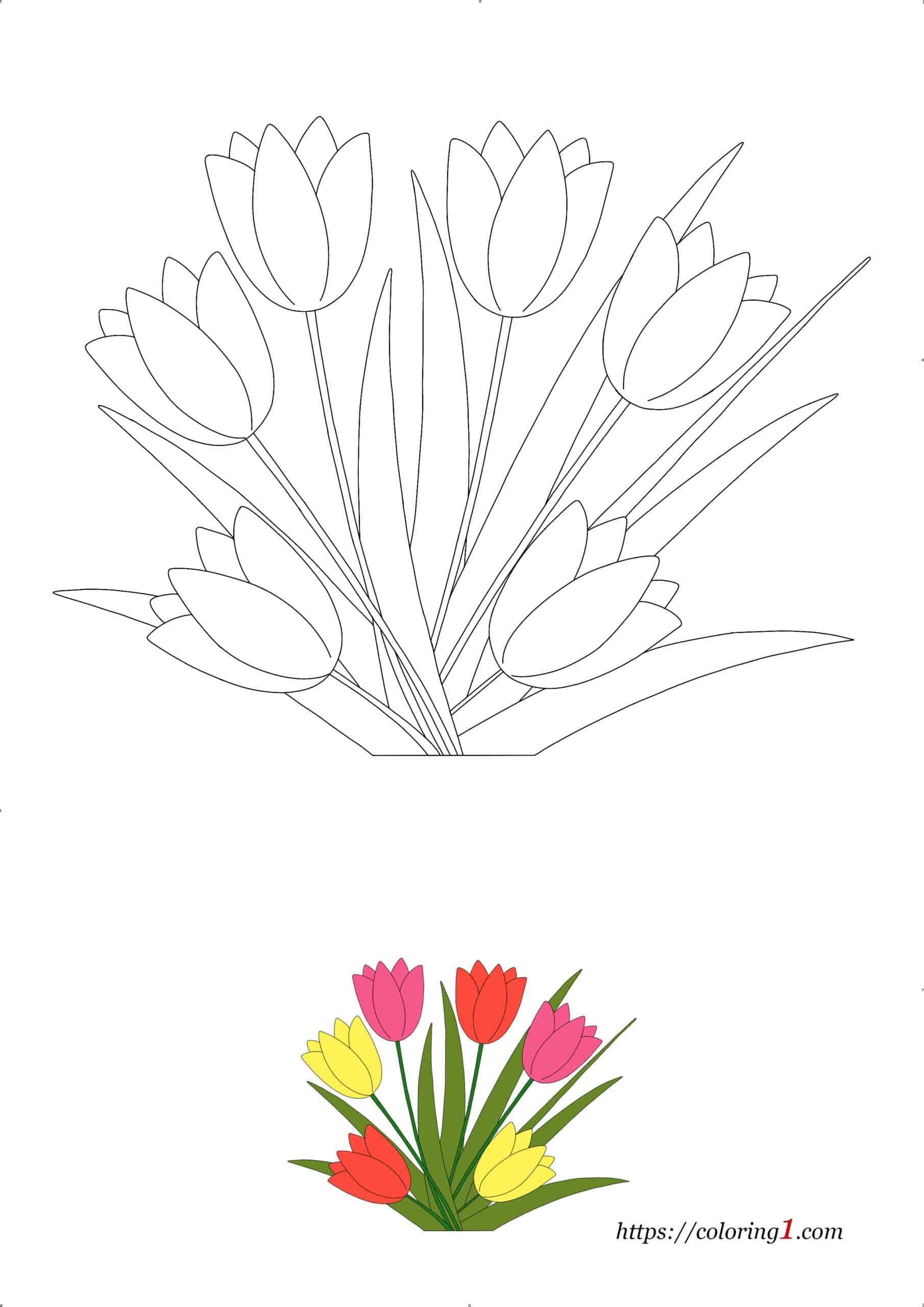 Coloriage dessin Fleur Tulipe à imprimer gratuit