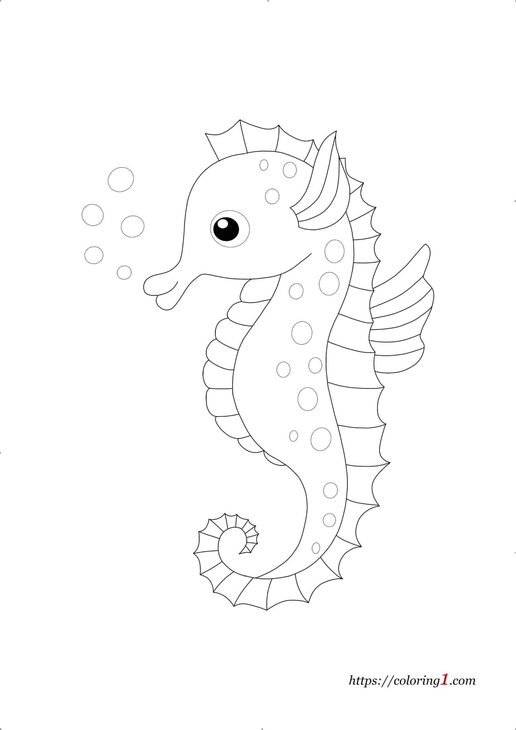 Sea Horse coloring page